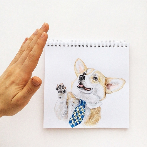 09-High-Five-Valerie-Susik-Валерия-Суслопарова-Cats-and-Dogs-Interactive-Animal-Drawings-www-designstack-co