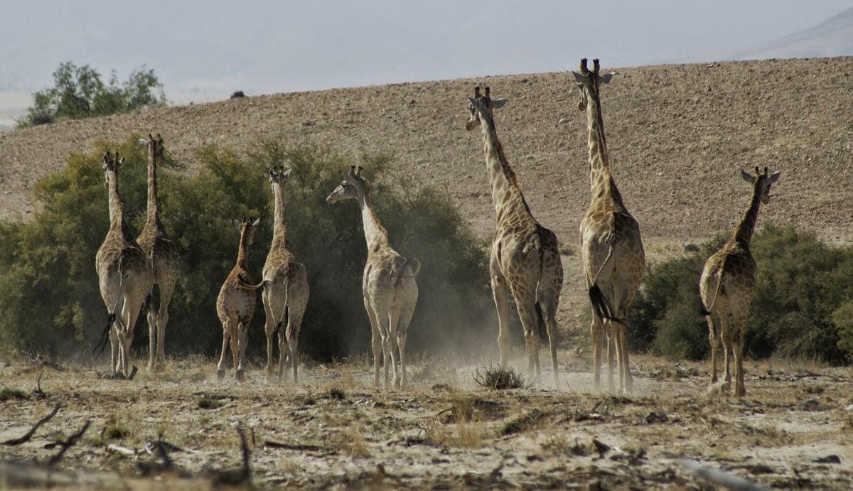 Okahirongo, Namibia
