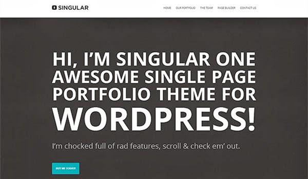 WP-Singular-theme