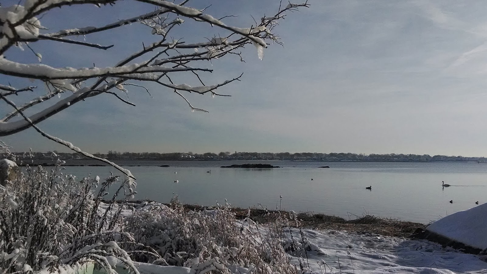 snow, photography, pawtuxet village, linda maintanis