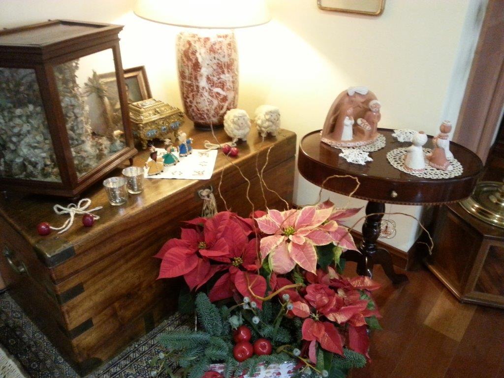 Feliz Navidad Argonauta en la pecera 2016