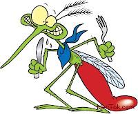Tips Gokil Mengusir Nyamuk