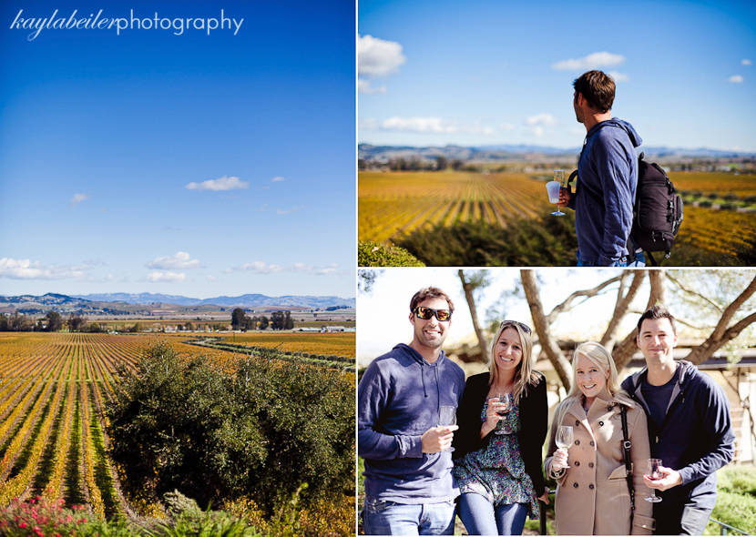 wine tours san francisco photo