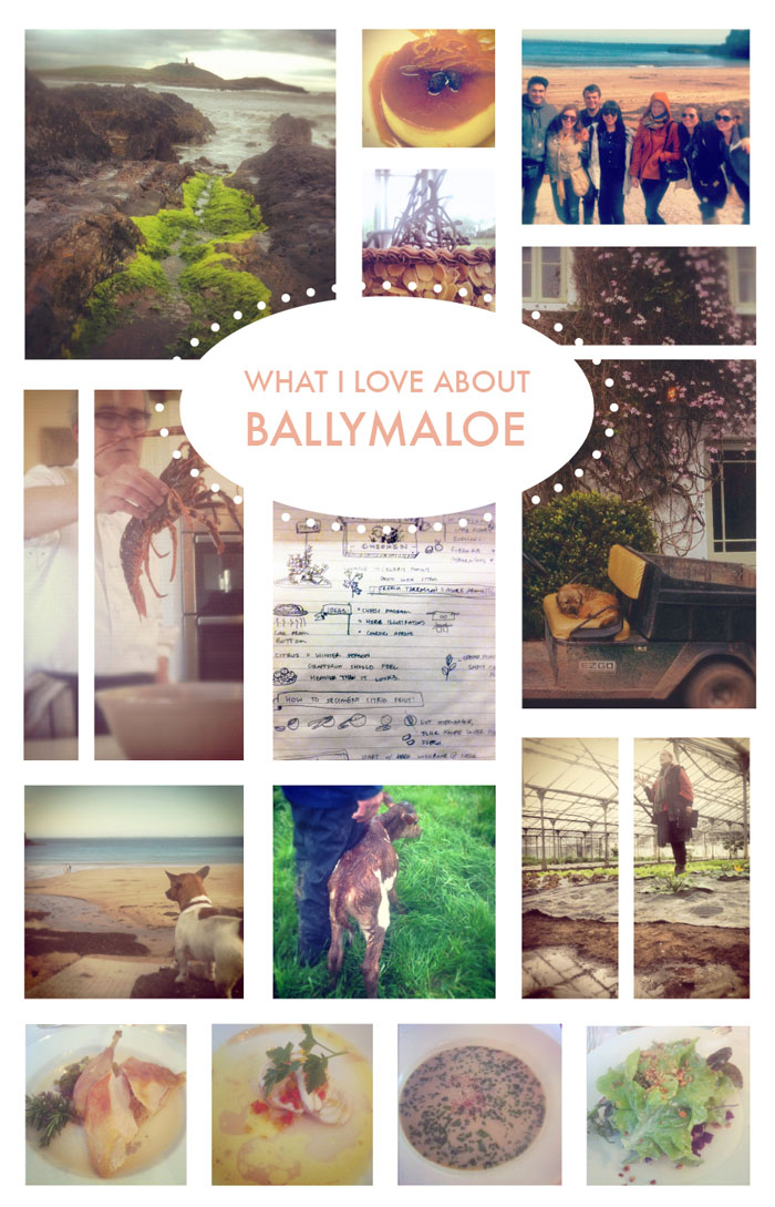 Photos from Ballymaloe Cookery School in  Country Cork, Ireland
