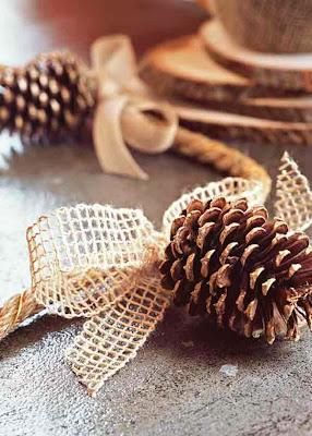 Χριστουγεννιάτικη διακόσμηση σπιτιού με φυσικά υλικά-9