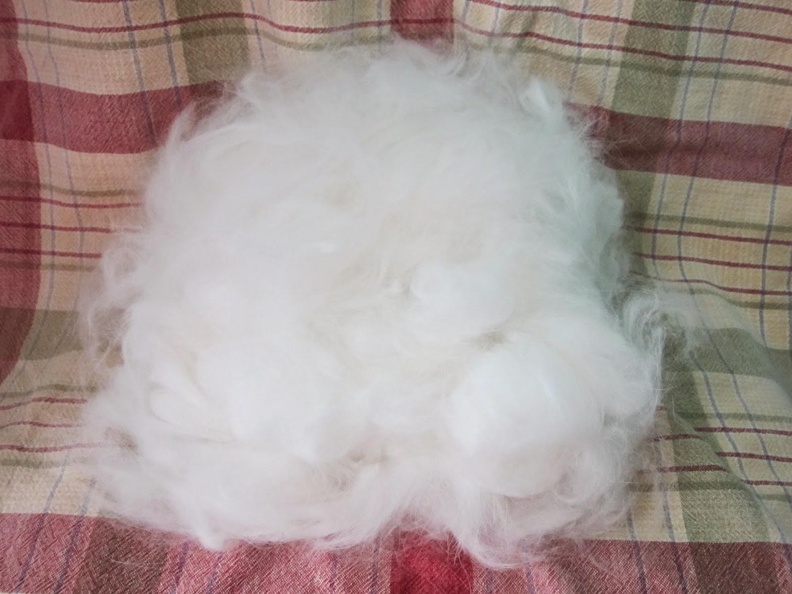 https://www.etsy.com/listing/196423219/cloud-soft-purebred-french-angora-fiber?ref=shop_home_active_1