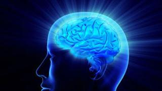 Ginkgo Biloba  for Treatment of Alzheimer's and Dementia | Alzheimer's Reading Room