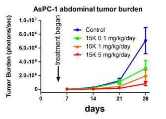 15K によるスイゾウ癌の増殖抑制 (マウス実験)