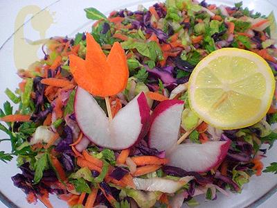 Oktay Usta Kış Salatası Tarifi Yeşil Elma