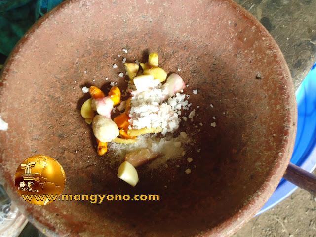 FOTO : Bawang merah, Jahe, Kunyit, Garamsiap di haluskan pakai coet ( penghalus manual )