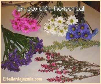 C mo secar flores - Como secar hortensias ...