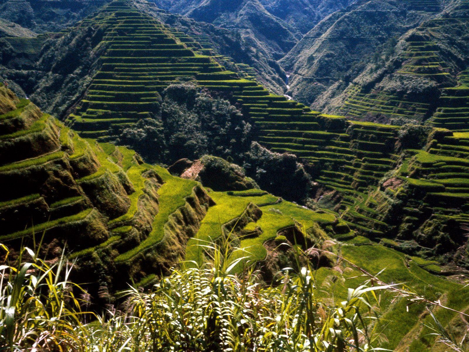http://1.bp.blogspot.com/-sdFo8Jb47wU/TwLP002ZxwI/AAAAAAAAAr8/VCHbiZUKzzY/s1600/philippines-wallpaper-2-739105.jpg