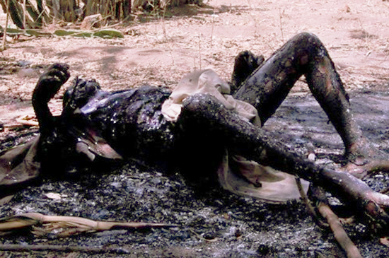 Queman Cristianos en Nigeria 2012 Holocausto Cristiano en