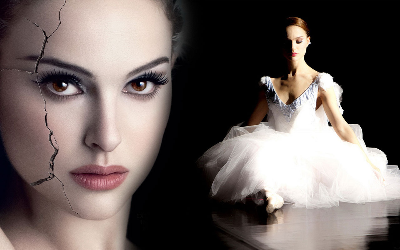 how to tell the sex of a black swan