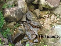 Creek Mount Butler