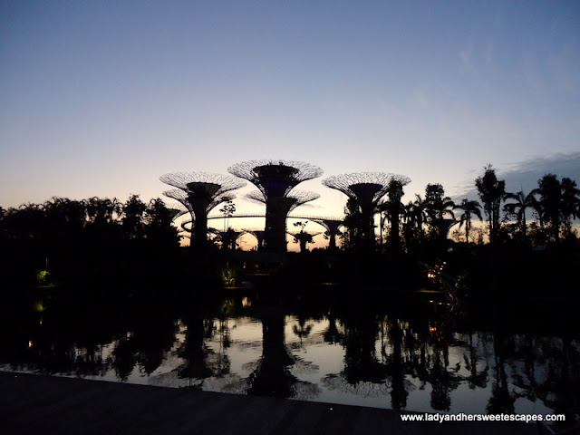 sunrise at Gardens by the bay