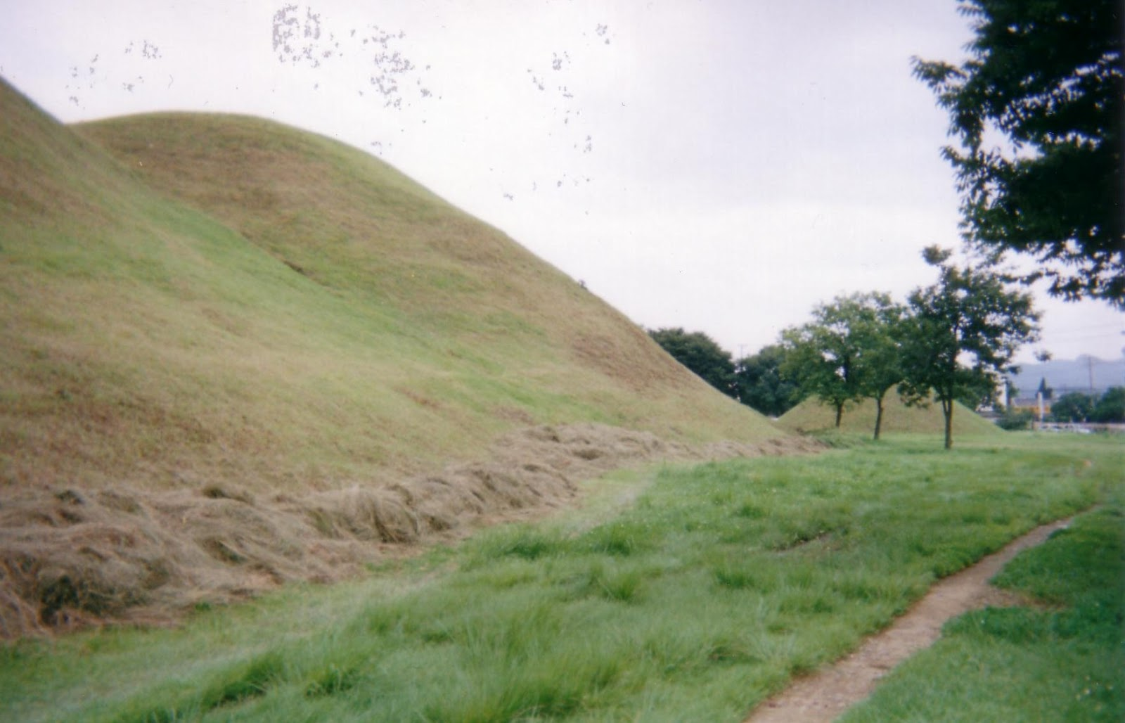 1000 amazing places 841 gyeong ju south korea for Mounding grass
