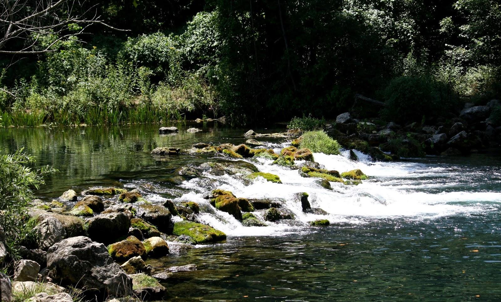 It 39 s my life tour of missouri bennett spring state park for Bennett springs trout fishing
