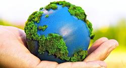 5 de junio: Día mundial del Medio Ambienteedales