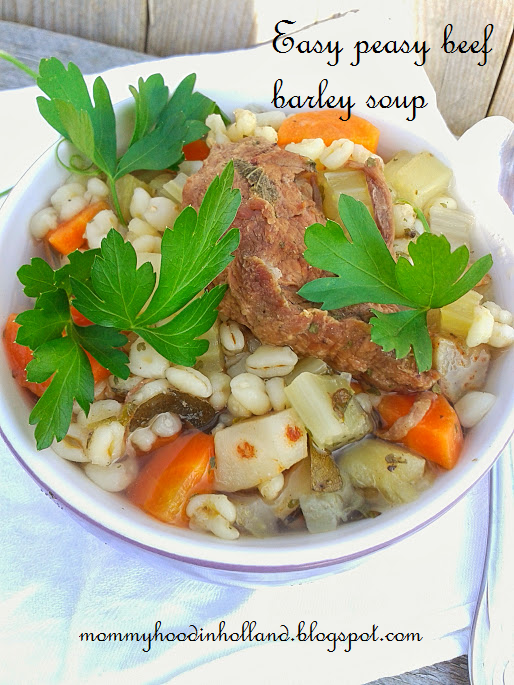 Welcome to Mommyhood: Easy healthy recipes - Beef barley soup