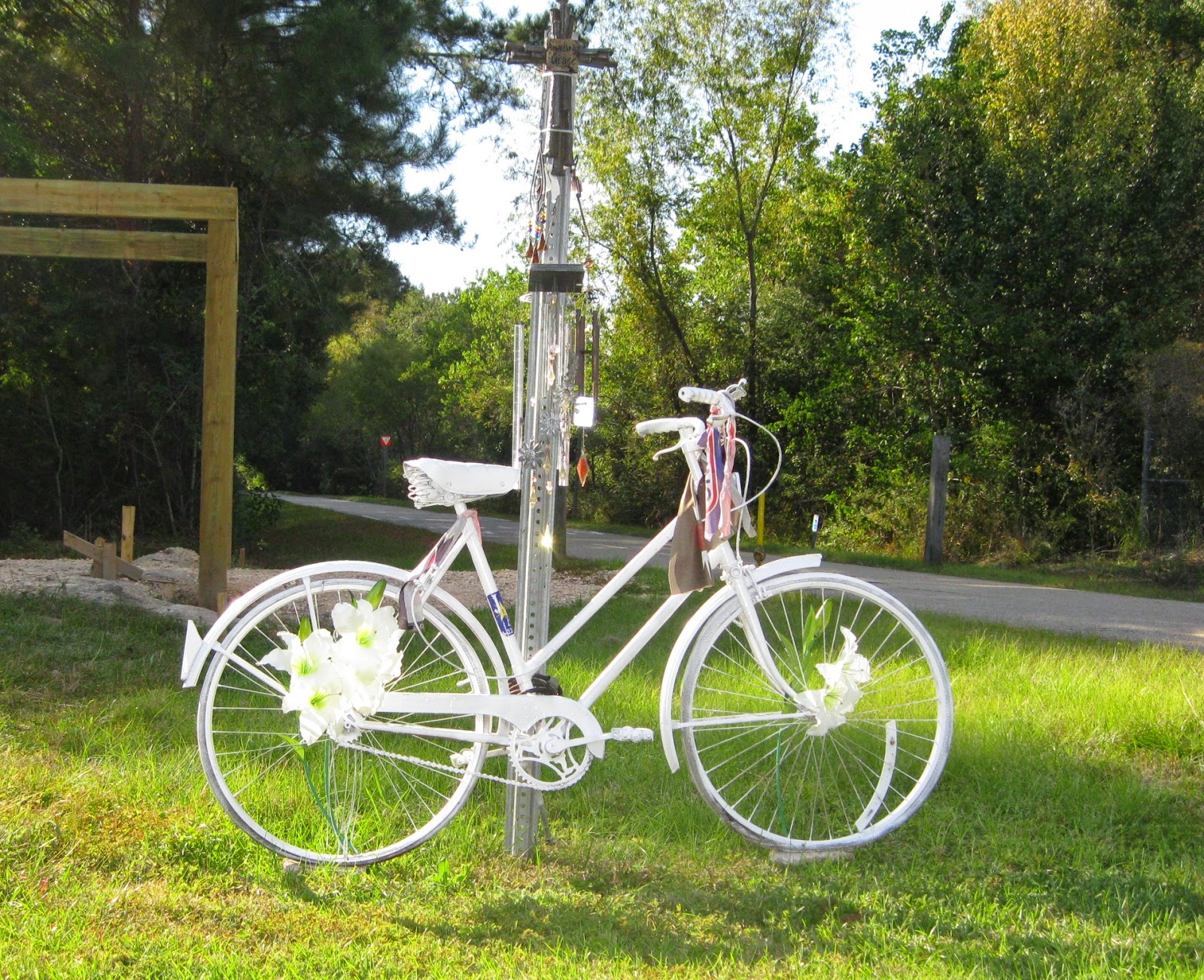 New Orleans Outdoor Companion Tammany Trace Not Just A Bicycle