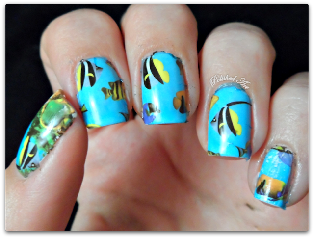 kkcenterhk-fish-water-decals