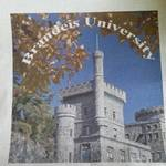 New Brandeis Canvas