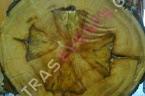Βρέθηκε το σχήμα σταυρού σε κοπή δένδρου