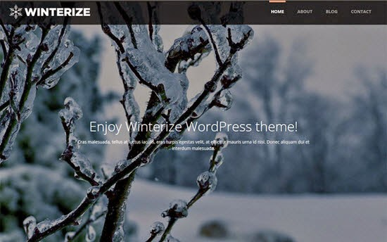 Winterize WordPress Theme