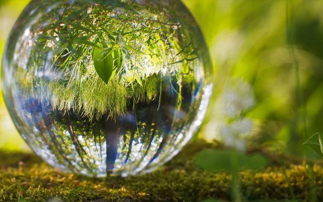 Ètica i medi ambient