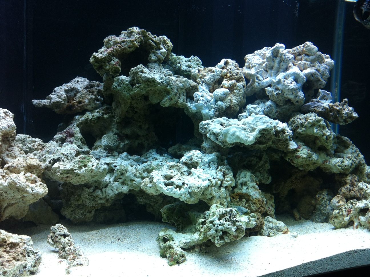120 Gallon Reef Display: Upgrading