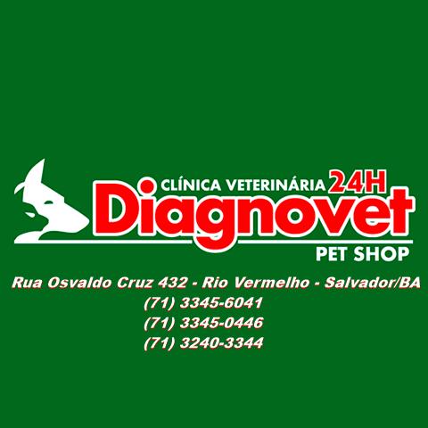 Veterinário em Salvador