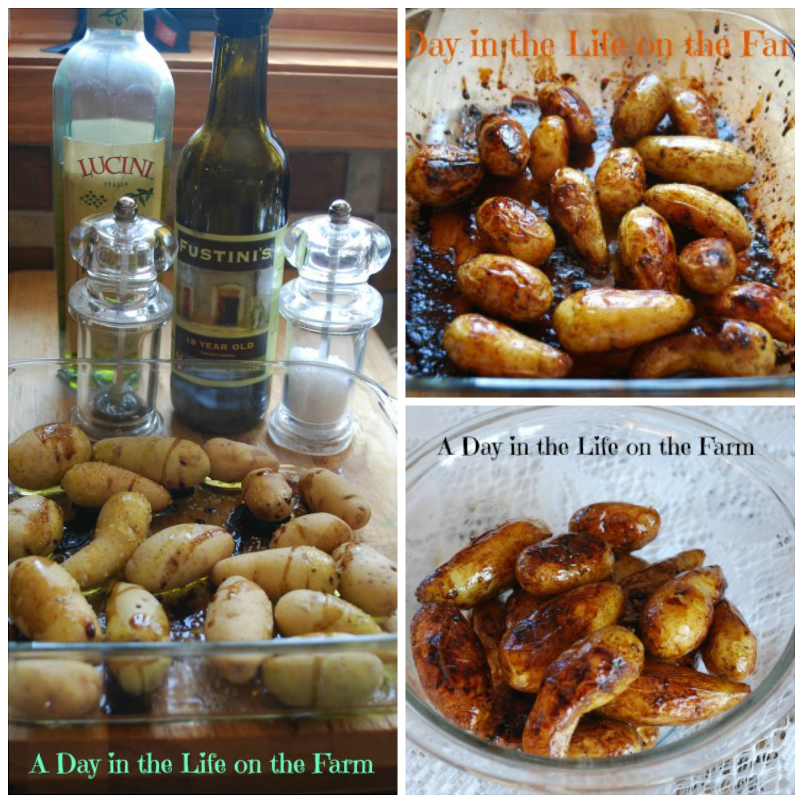 ... on the Farm: Balsamic Roasted Fingerling Potatoes for #Blogger CLUES