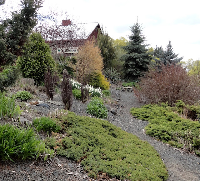 Part Of The Lower Display Garden. Keep In Mind This Was Late April In  Spokane, A Zone 5/6 Climate...things Were Just Waking Up!