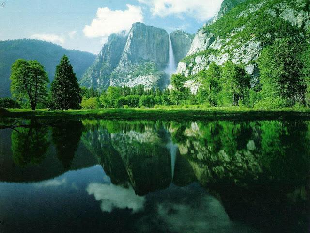 Background Nature3