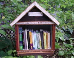 """Little Free Library,"" a birdhouse-shaped structure filled with books"