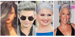Celebridades jovenes con tendencia de cabello color gris