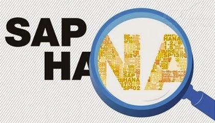 SAP HANA In Memory