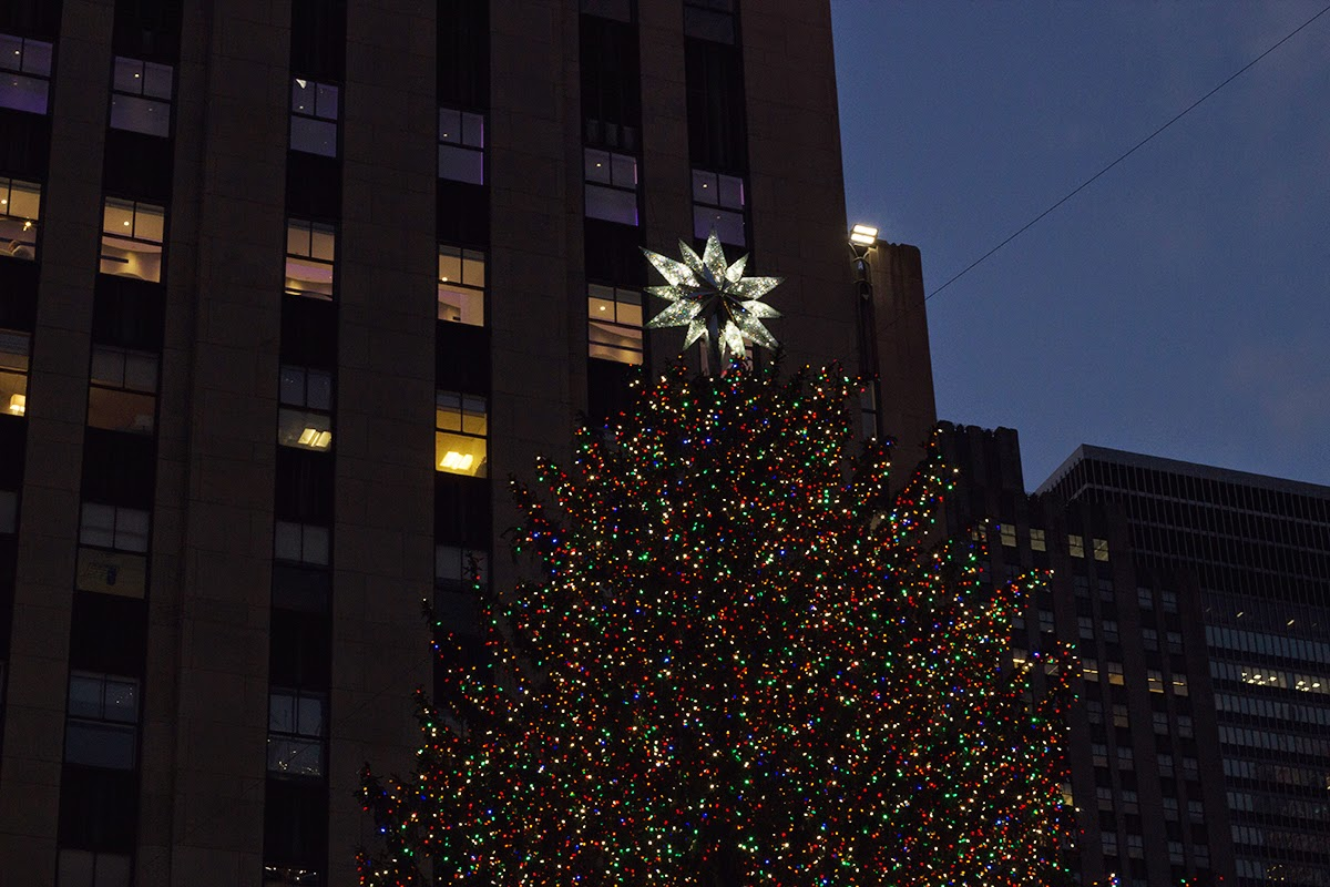 tree at rockefeller center