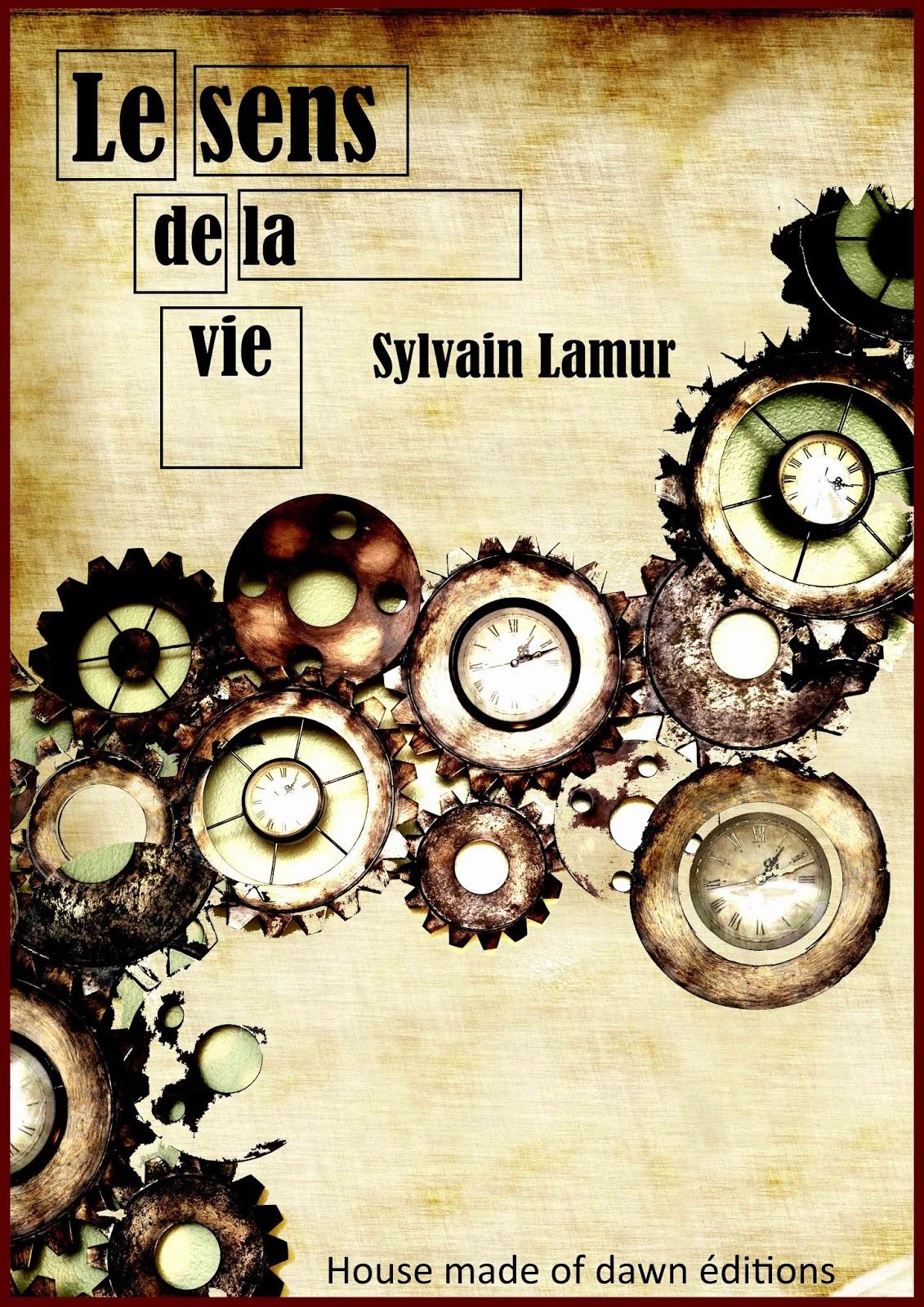 http://www.lalecturienne.com/2014/09/le-sens-de-la-vie-sylvain-lamur.html