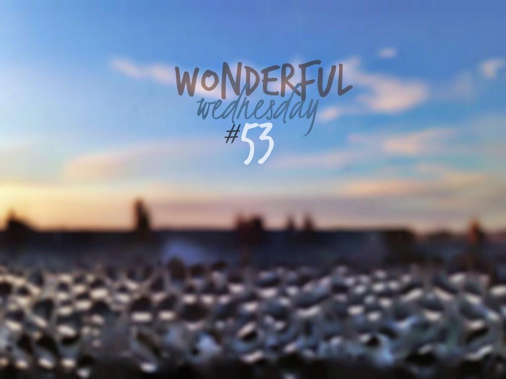 Wonderful Wednesday #53