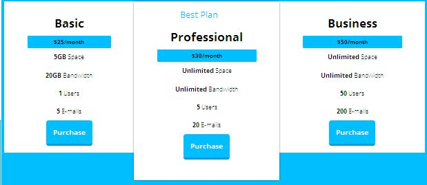 Create a simple pricing table using CSS