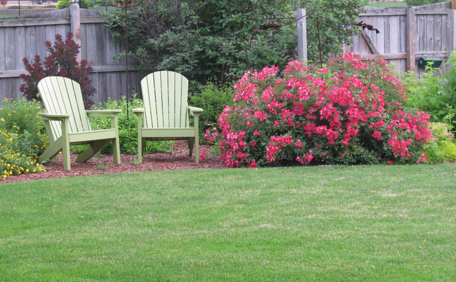 may dreams gardens june 2013