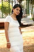 Yamini bhaskar glam pix-thumbnail-16