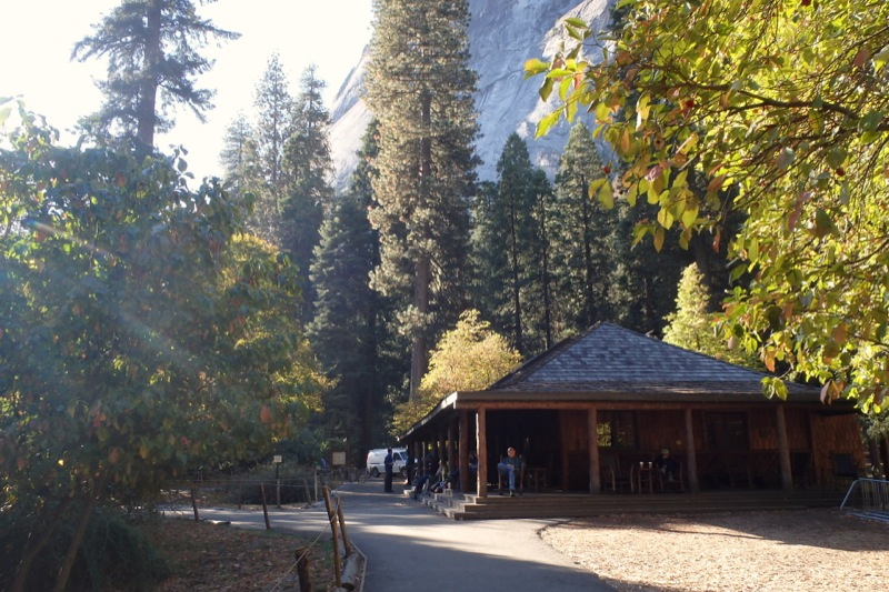 Life in the slow lane the pearl yosemite 39 s curry village for Curry village cabins yosemite