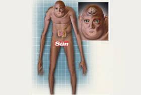 Beginilah Bentuk Tubuh Manusia 1000 Tahun Mendatang