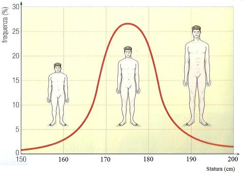 Portale scientifico esistono interazioni anche tra alleli - Due caratteri diversi ...