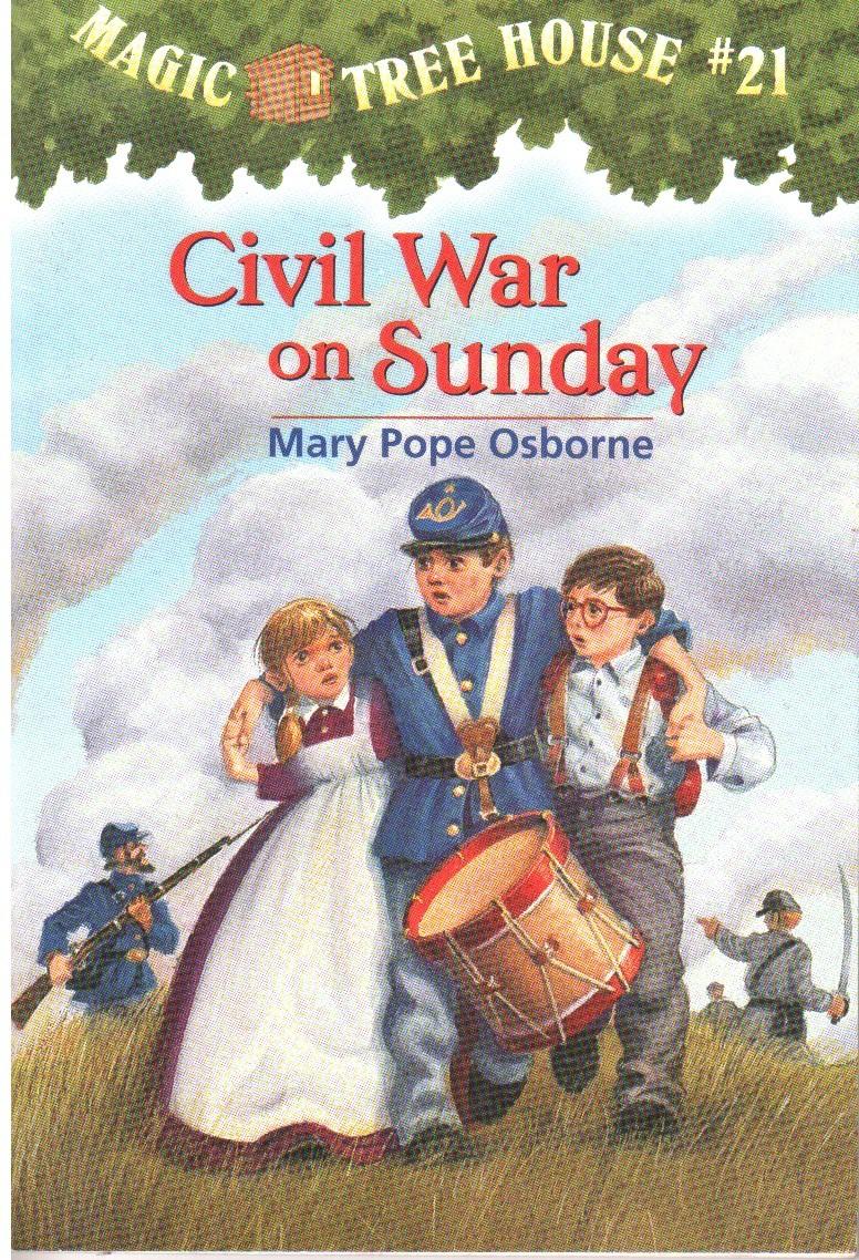Lot of 21 Civil War Books