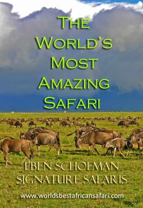 www.worldsbestafricansafari.com