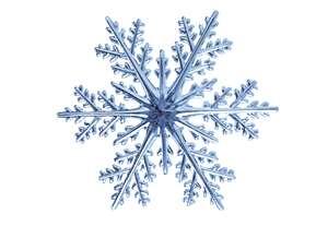 snowflake bullet point